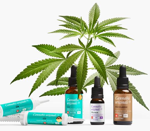 Olejki pasty CBD CBDa cannabis originals